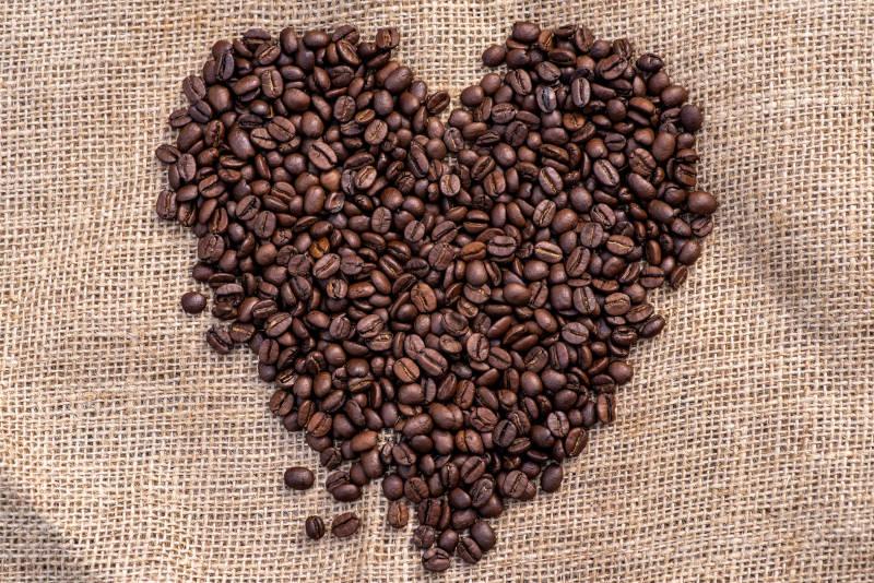 The best coffee bean roaster